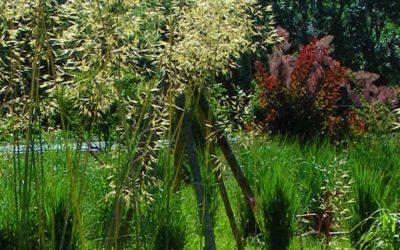 Nous partageons «les jardins de Lornay»